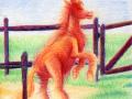 Lass_das_Pferd_raus