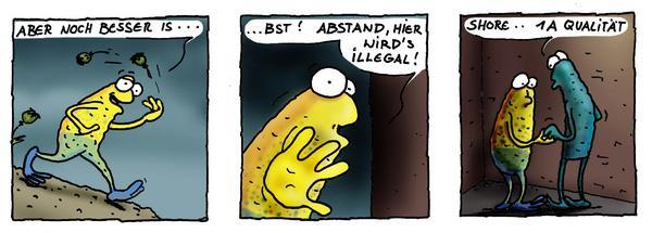 wilmergehtbaden4