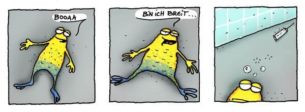 wilmergehtbaden6